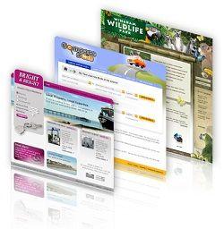Website-Design-Development-Examples