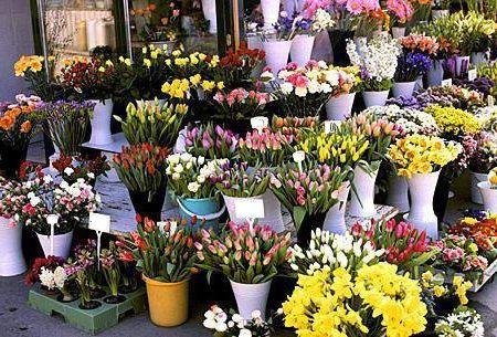 cvetochnyj-biznes